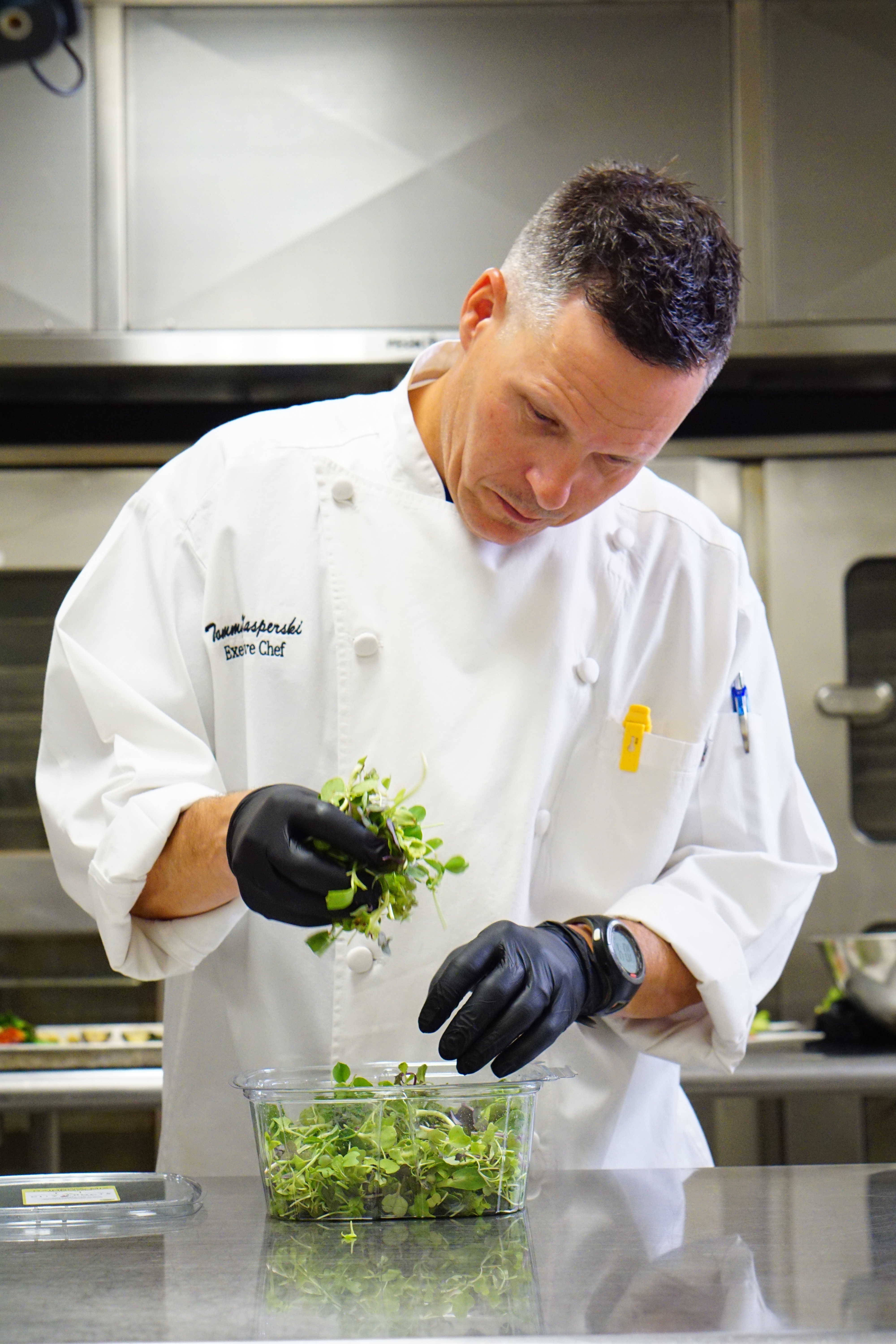 Chef Tomy picking microgreens from a local farm